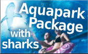 Aquapark with sharks package